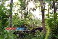 Sempat Terkenal di Tahun 1960-1990, Pasir Cabe, Destinasi Wisata Banjar yang Terlupakan