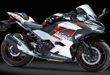 Kawasaki New Ninja 250
