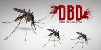 Di Tengah Pandemi Covid-19, Kasus DBD di Banjar Meningkat Cukup Drastis