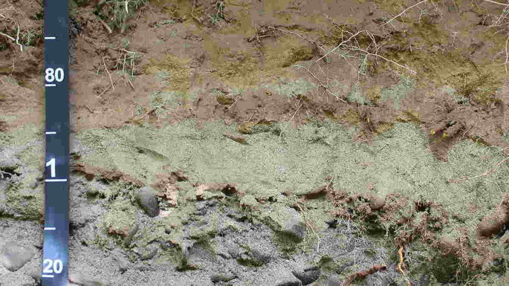 Ciri Tanah Aluvial