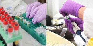 Sebelum Dianggap Manjur, Keamanan Vaksin Covid-19 Paling Utama Diuji