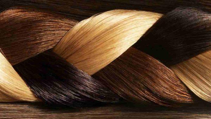 Struktur rambut manusia, fase pertumbuhan dan fungsinya
