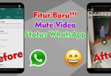 Mute Video WhatsApp