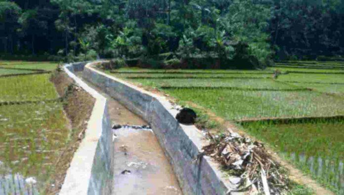 Pemeliharaan Jaringan Irigasi di Panawangan Ciamis Harus Libatkan P3A